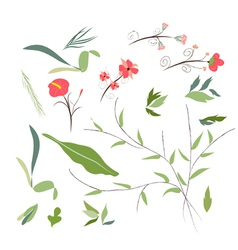 set of florals and ribbon vector image vector image