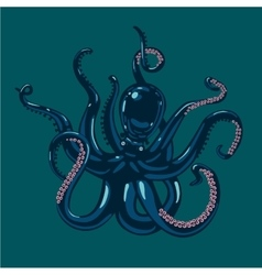 Colored octopus on isolated background vector