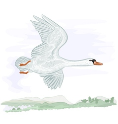 Flying high swan vector