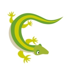 Green water dragon lizard nature animal reptile vector