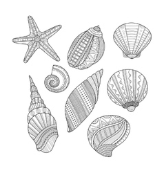 Black and white sea shells for coloring book vector