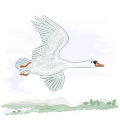 Flying high swan vector image