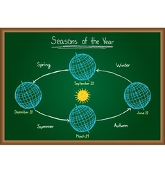 Seasons of the year on chalkboard vector