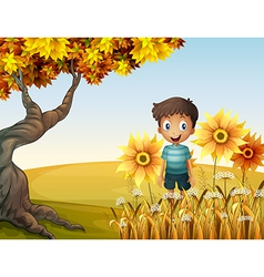 A happy boy near the sunflowers vector image