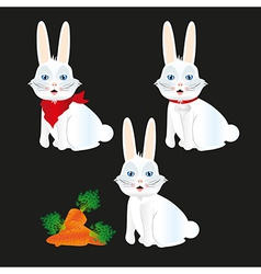 bunny with different accessories isolated on black vector image