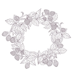 White wreath of raspberries vector