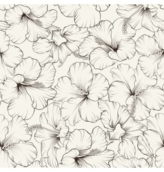 Beautiful hibiscus pattern vector image vector image