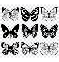 Butterfly silhouettes macro collection vector
