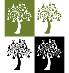 vector set of pear trees vector image