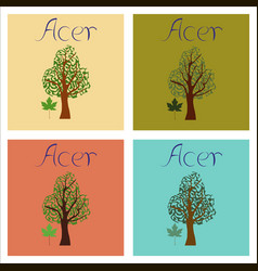 Assembly of flat plant acer vector