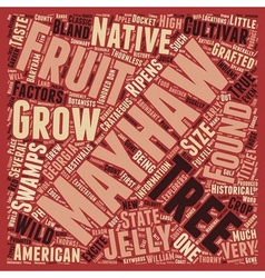 History of the mayhaw text background wordcloud vector