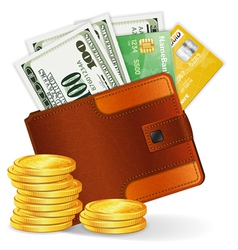 leather wallet with dollars vector image vector image