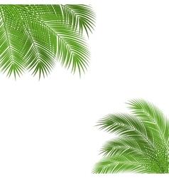 Palm branch frame vector