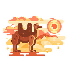 Two-humped camel in desert vector
