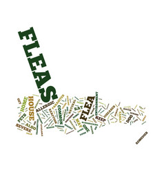 Fleas a common resident in every house text vector