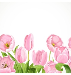 Pink flowers tulips seamless background vector