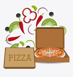 Pizza design vector