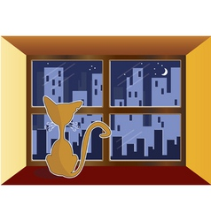 Cat in window vector
