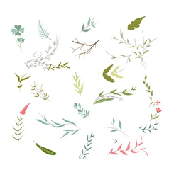 set of florals and ribbon vector image