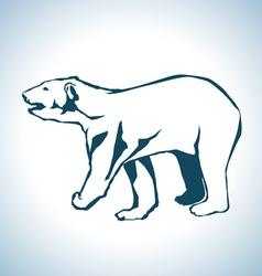 Bear drawing vector