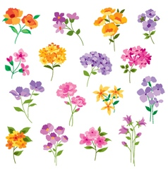 flowers clipart vector image