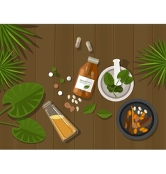 Herbal natural medication health nature healing vector