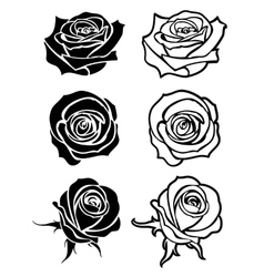 Close up rose tattoo logos floral vector
