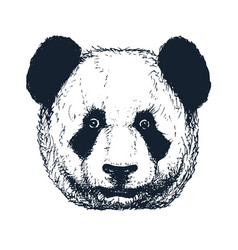 Hand drawn panda vector