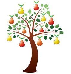 vector pear tree vector image vector image