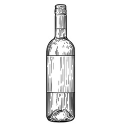 Wine bottle  drawing engraving ink vector