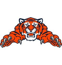 tigers tiger vector image