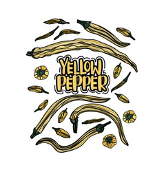 Hand drawn yellow peppers vector