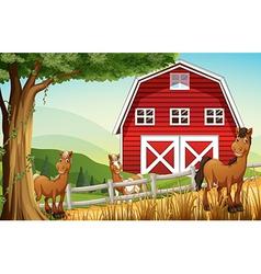 Horses at the farm near the red barnhouse vector