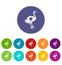 ostrich icons set flat vector image