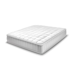 Double mattress in realistic style vector
