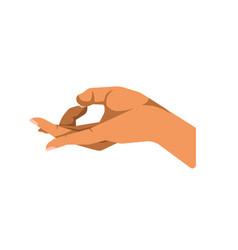 Hand gesturing ok vector