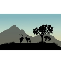 Silhouette of antelope in hills vector