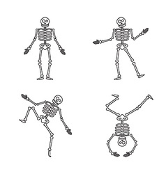 Happy halloween skeleton vector