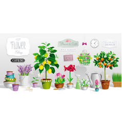 collection of pot plants vector image vector image