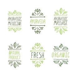 Hand-sketched typographic elements Ayurveda vector image