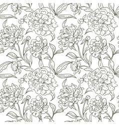 Peony seamless pattern vector image