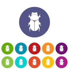 Chafer beetle set icons vector