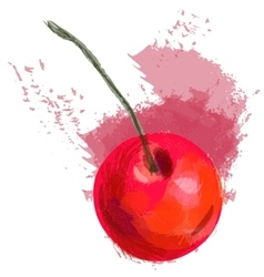 Red cherry vector