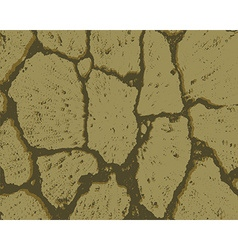 Crack texture of dry earth vector
