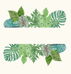 Botanical background with tropical leavessummer vector