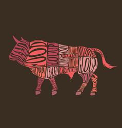 bull cuts vector image vector image