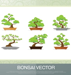 set of bonsai plant in the pot flat style vector image