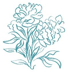 Beautiful peony bouquet vector image vector image