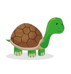 turtle pet shop isolated icon vector image vector image
