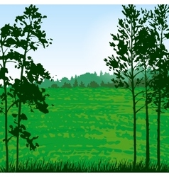 Valley landscape with pine trees vector